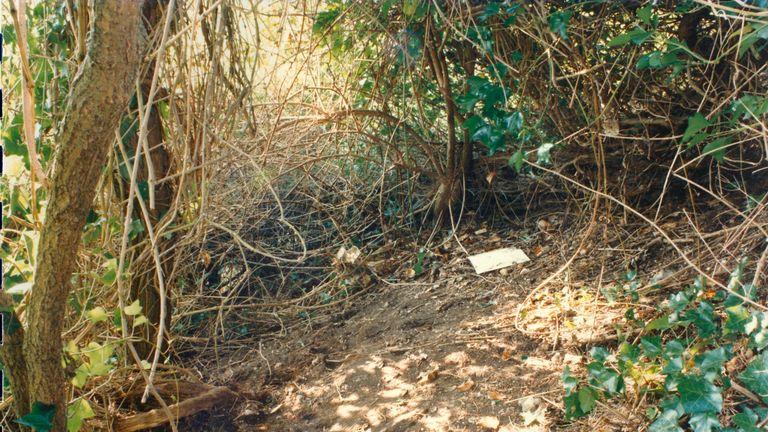 دو جوان 18 ساله دختران را پیدا کردند & # 39؛  اجساد در پارک وحشی  عکس: پلیس ساسکس