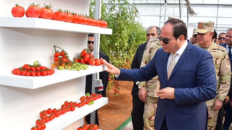Egyptian President Abdel Fatah al-Sisi has said people should lose weight