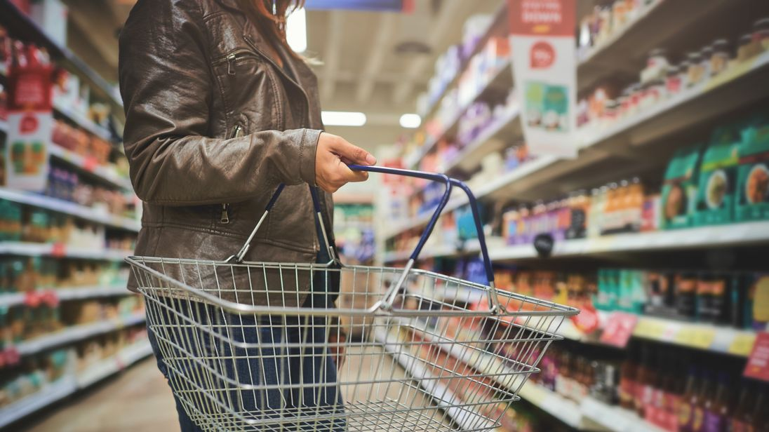 Shopping, One Woman Only, Shopping Basket, Women, Adult
