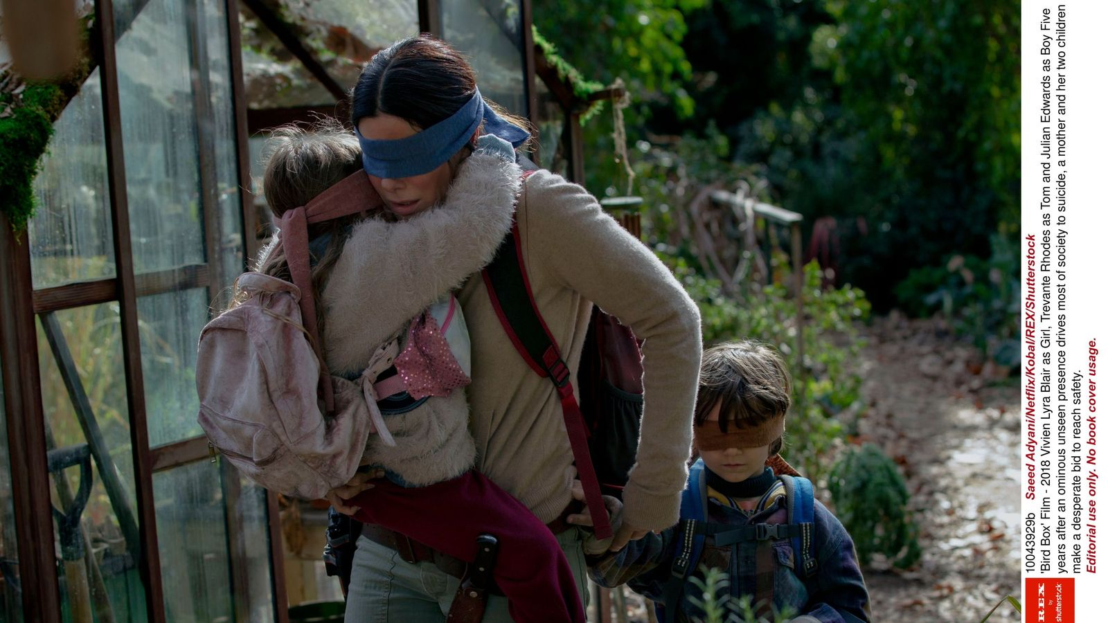 Netflix draws 9m new subscribers amid Bird Box success