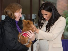 The Duchess of Sussex meets Foxy during a visit to the Mayhew charity