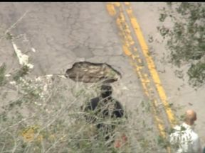 A motorist reported the sink hole to police. Pic: WPLG