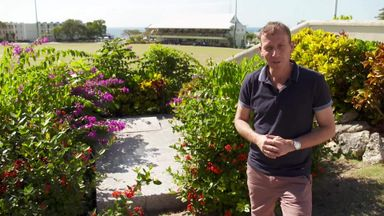 Athers' guide to Barbados grounds