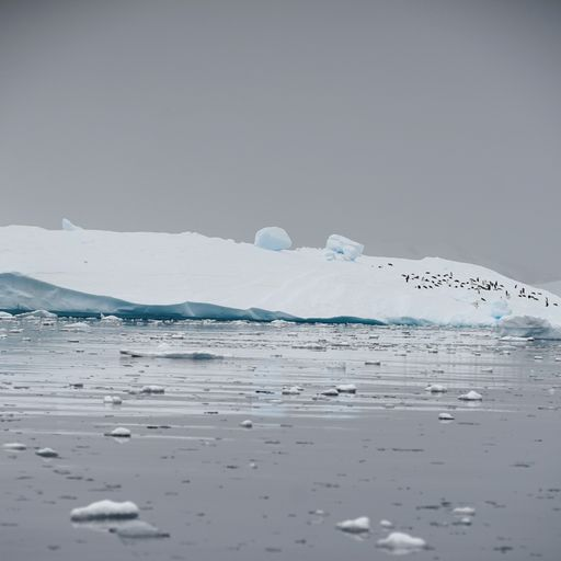Sea levels could rise by metres amid record Antarctic ice melt