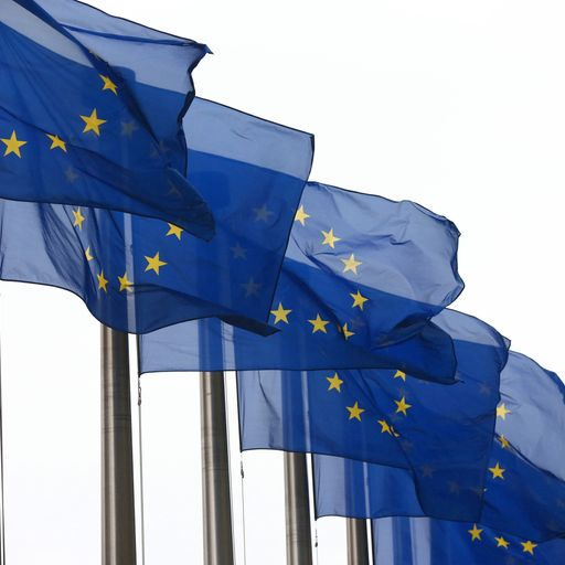 European elections: What might happen and why should we care?