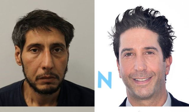 David Schwimmer 'lookalike' arrested after failing to appear in court