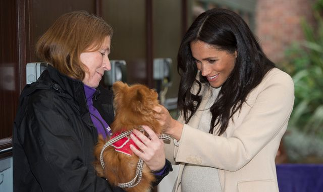 Pregnant Meghan called a 'fat lady' during visit to animal charity