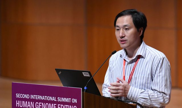 Chinese authorities appear to confirm gene-edited babies