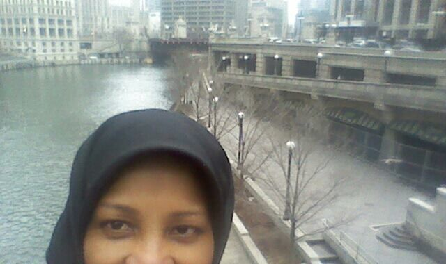 Iran claims US has detained journalist Marzieh Hashemi