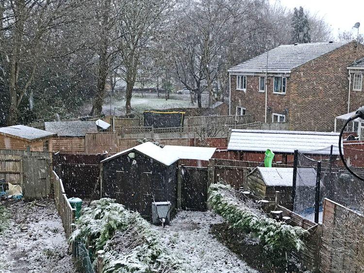 Snow in Bracknell, Berkshire settles in gardens