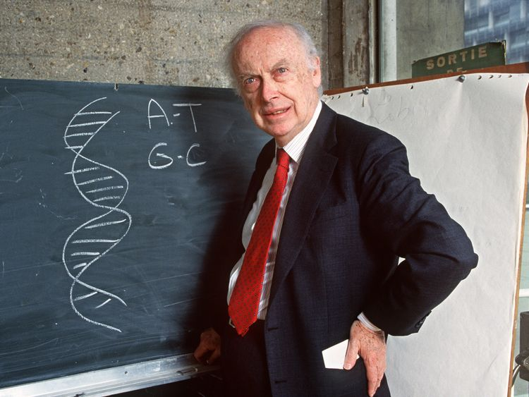 DNA pioneer stripped of honours amid 'reckless' race remarks