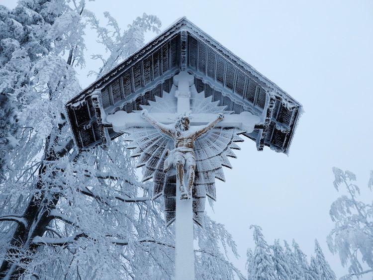 Sow covers a Jesus Christ figure near Szczyrk, Poland
