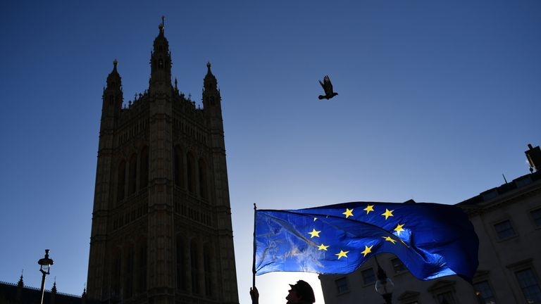 An anti-Brexit protestor waves a European Union flag in Westminster