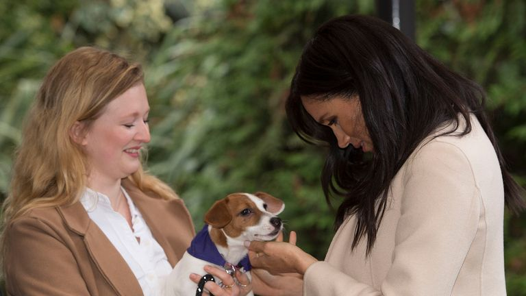 Meghan meets Maggi, a jack Russell during her visit