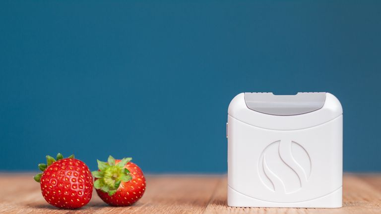 FoodMarble analyses breath to work out whether food is being digested properly or not
