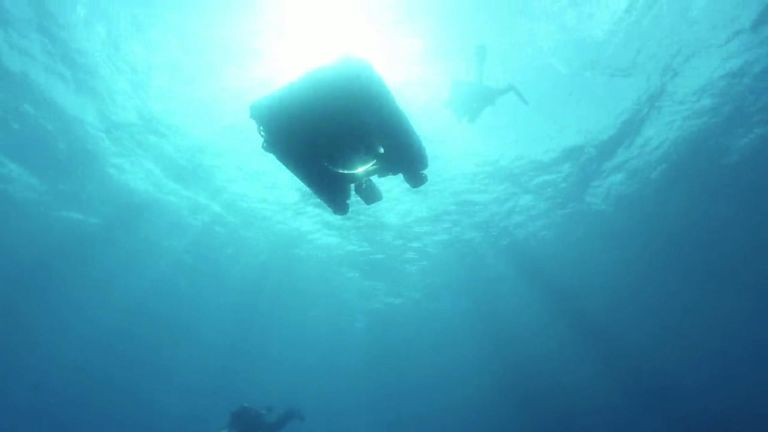 Sky News' Deep Ocean Live series will draw attention to the plight of our  oceans