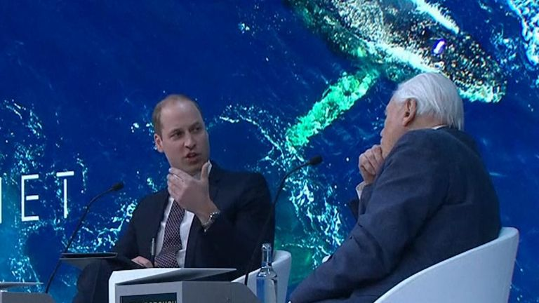 Prince William interviews Sir David Attenborough on stage in Davos