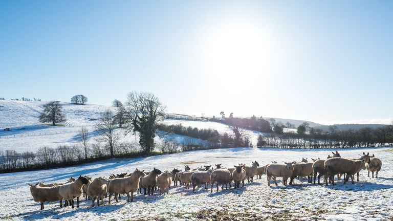 Wintry conditions have brought hill snow to some parts of the country