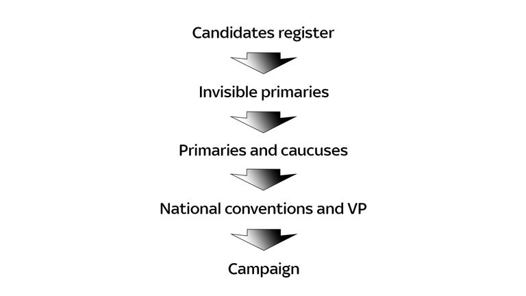The process by which election candidates are chosen