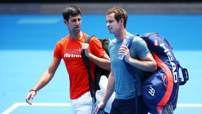 Djokovic empathises with Murray plight