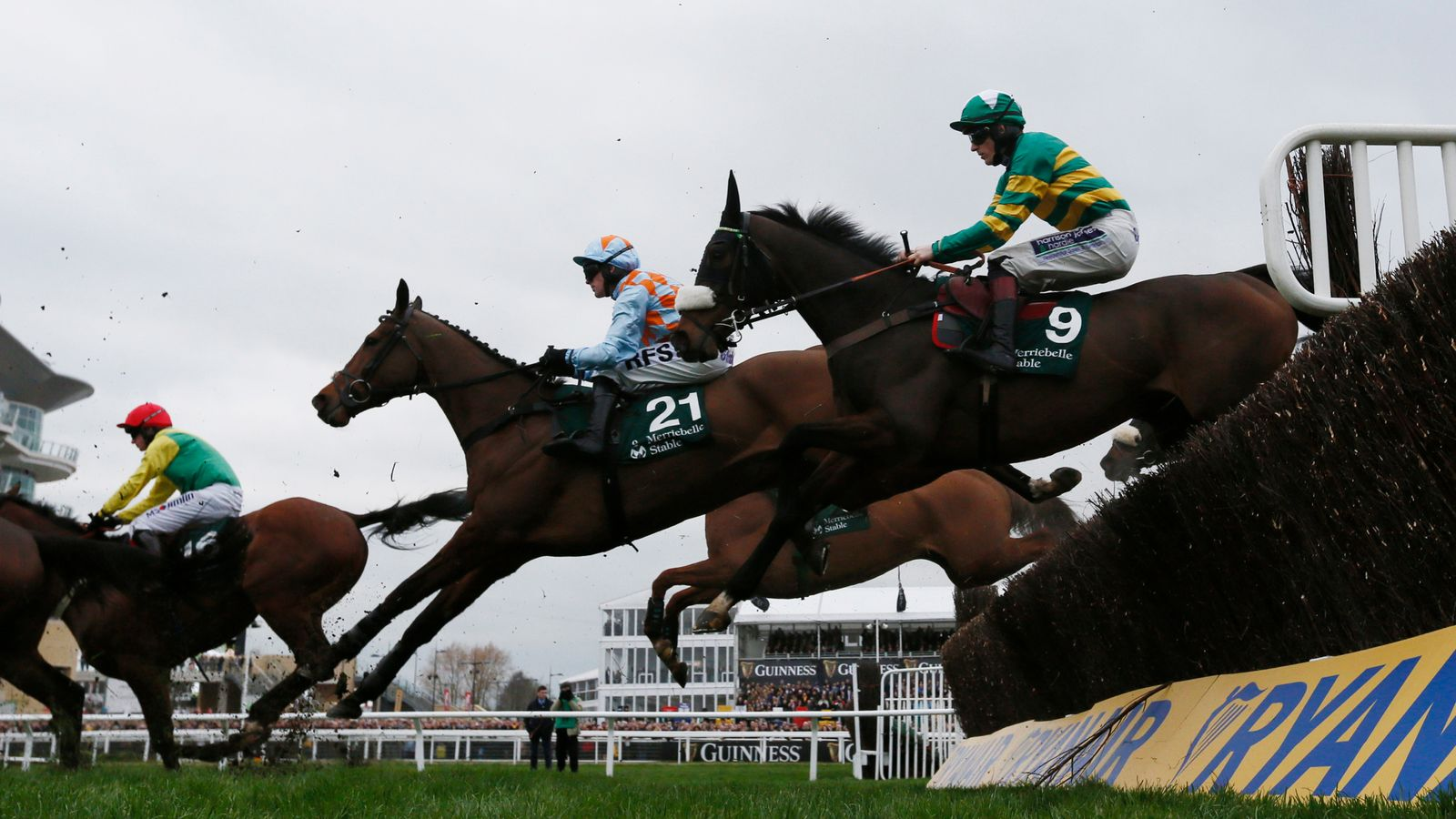 equine flu  horse racing to resume following outbreak
