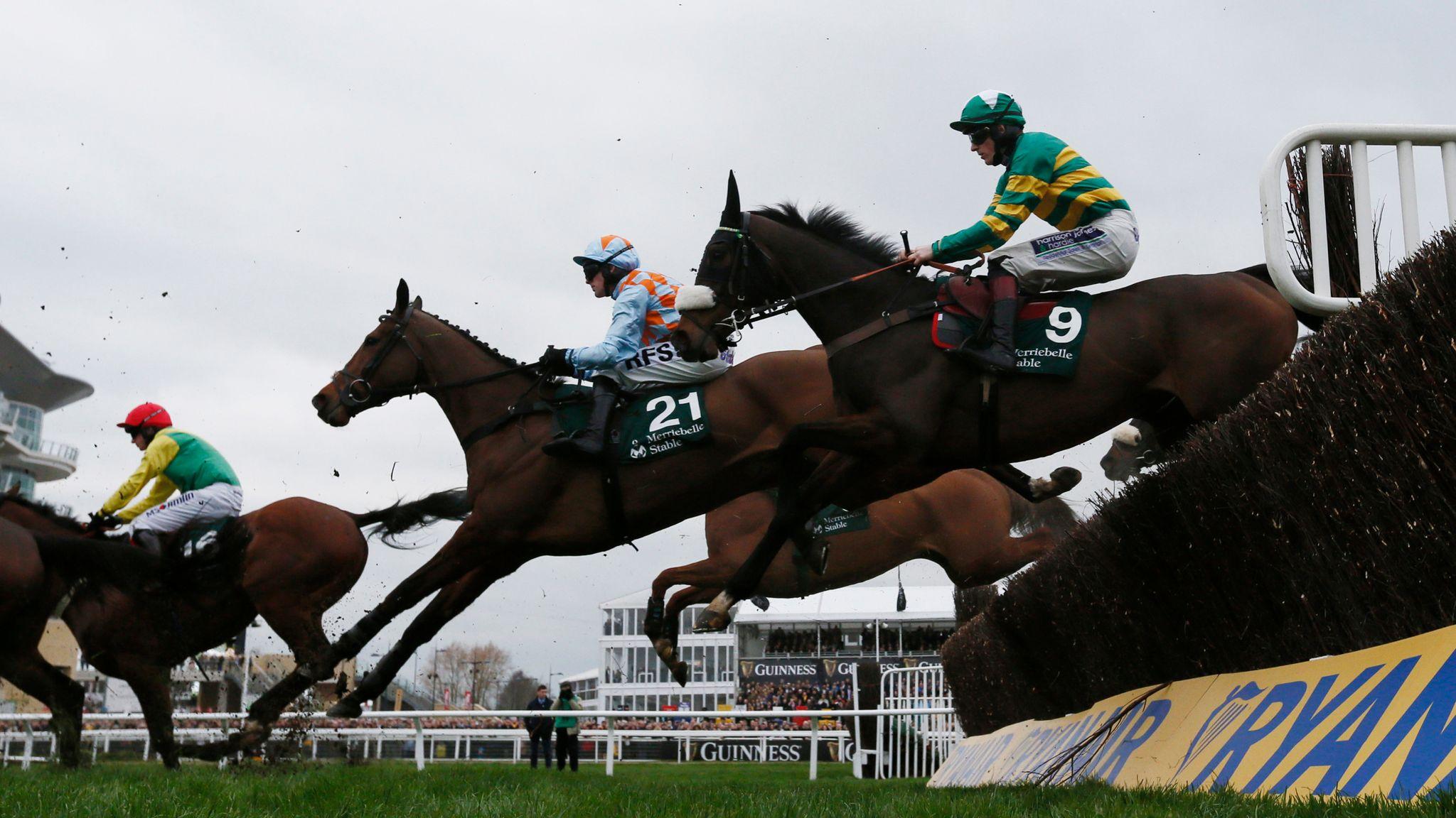 Картинки по запросу horse racing