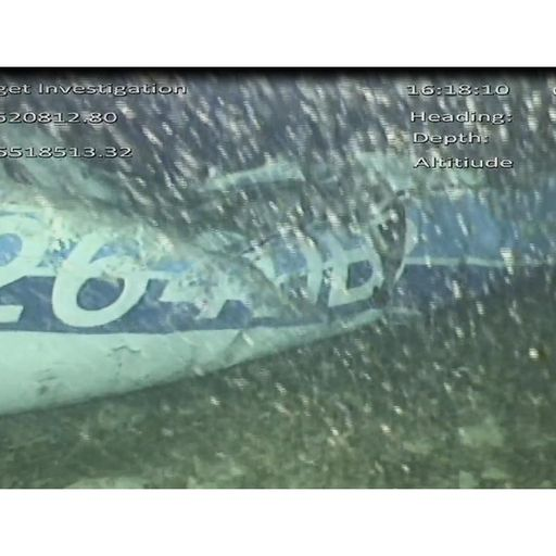 'One occupant visible' in Emiliano Sala plane wreckage