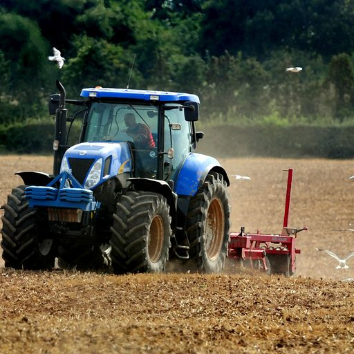 No-deal Brexit would be 'catastrophic', farmers warn
