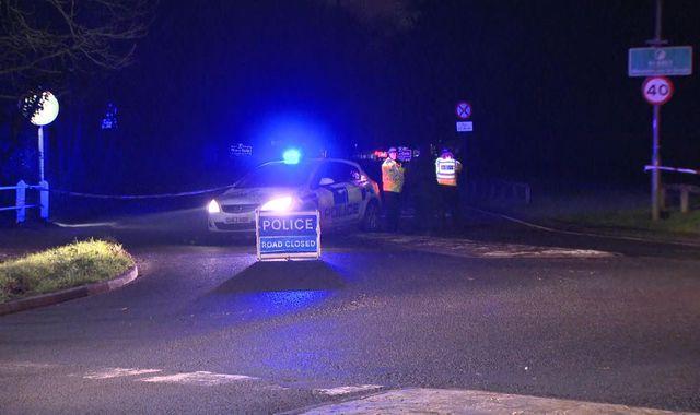 Man dies after tree falls on car in Surrey