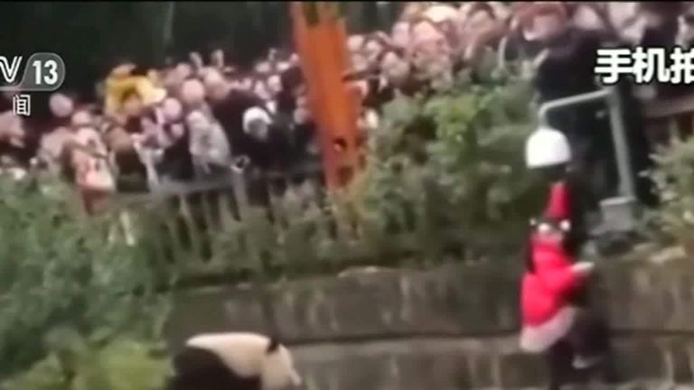 Girl rescued from panda enclosure