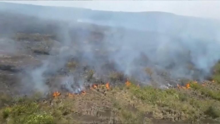 Due to El Nino phenomenon, a forest fire broke out in a mountainous area near Bogota, the capital city of Colombia.