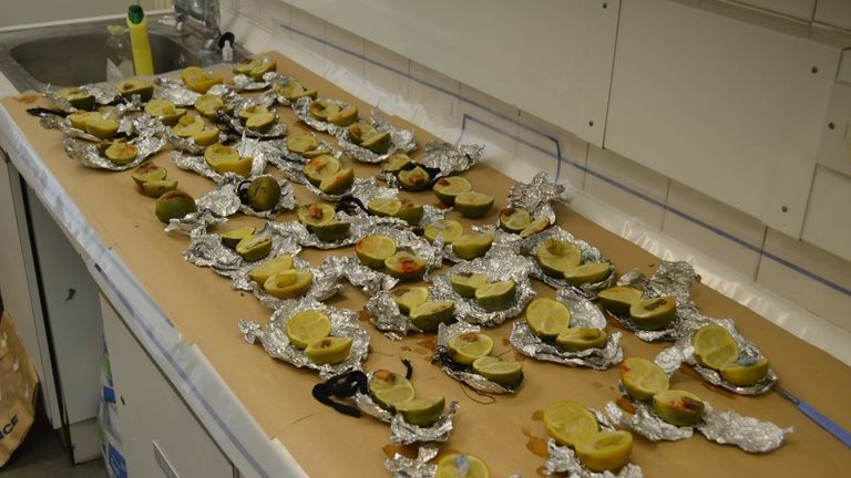 Officers found bizarre spells inside 40 frozen limes