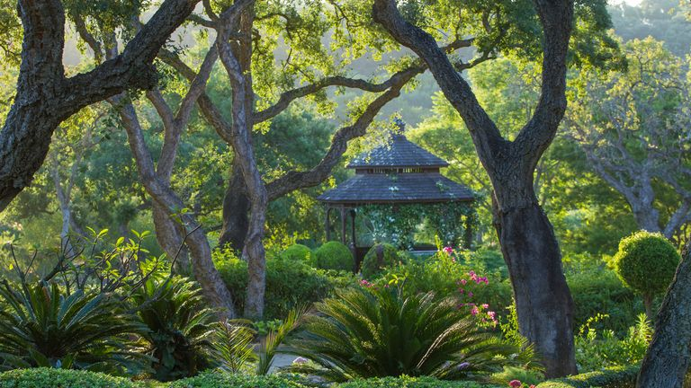 European Garden Photography Award winner: Cork Oak Gazebo, by Scott Simpson, Cádiz, Andalucía, Spain