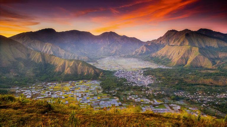 The Bountiful Earth winner: Colourful Fields, by Suwandi Chandra, Sembalun Lawang, Lombok, Indonesia