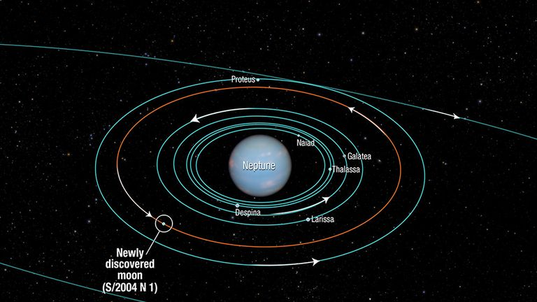 Diagram shows Neptune's moons. Pic: NASA/ESA and A Feild