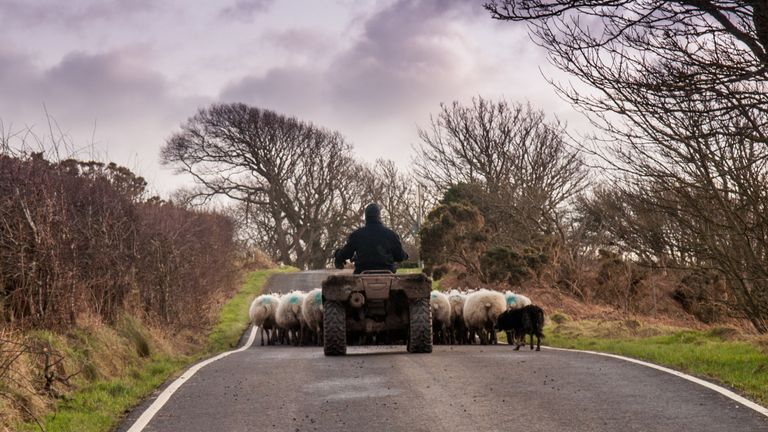 Farmers could be locked out for six months, the NFU has warned