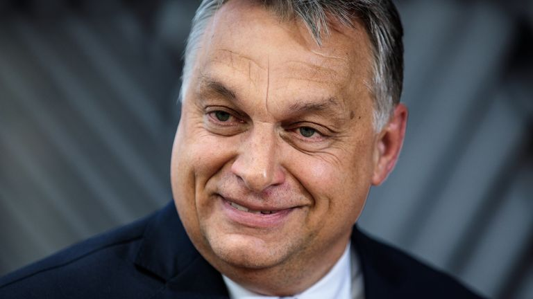 Mr Orban said the measures will 'ensure the survival of the Hungarian nation'