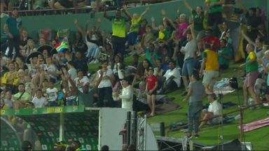 Fan takes superb one-handed catch!