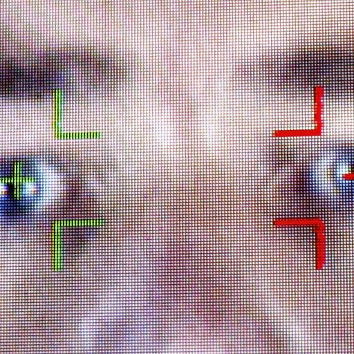 Facial recognition trials show govt at its worst
