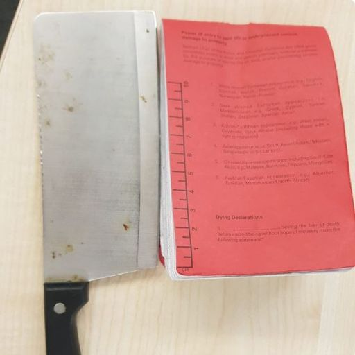 Schoolboy, 14, arrested after 'trying to slash fellow pupil with meat cleaver'