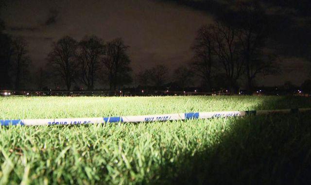 Girl, 11, among four injured in 'pellet gun shooting' in southwest London