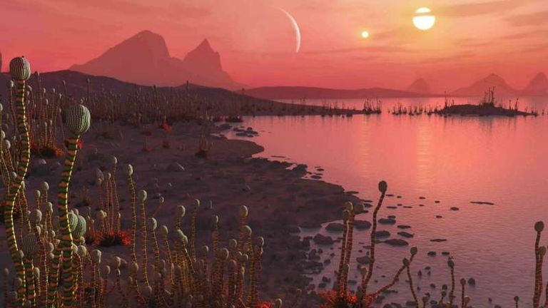 Artist's impression of life on a planet orbiting binary stars. Pic: Mark Garlick