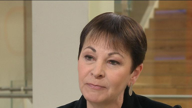 Caroline Lucas is highly critical of the Conservative approach to Brexit and of Theresa May in particular