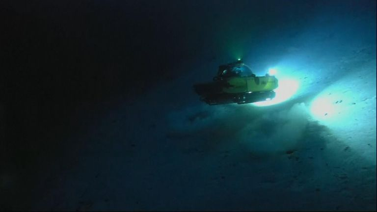 The ocean began to reveal some of its secrets as the British-led Nekton mission deployed two submersible craft 100 metres down.