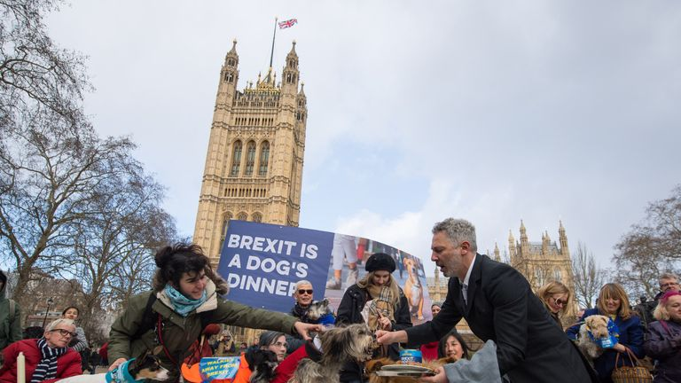 "Dogs sitting on a dinner table are served with dog food during an anti-brexit event billed as ""the biggest dog's dinner in history"" at Victoria Tower Gardens, near the Houses of Parliament"