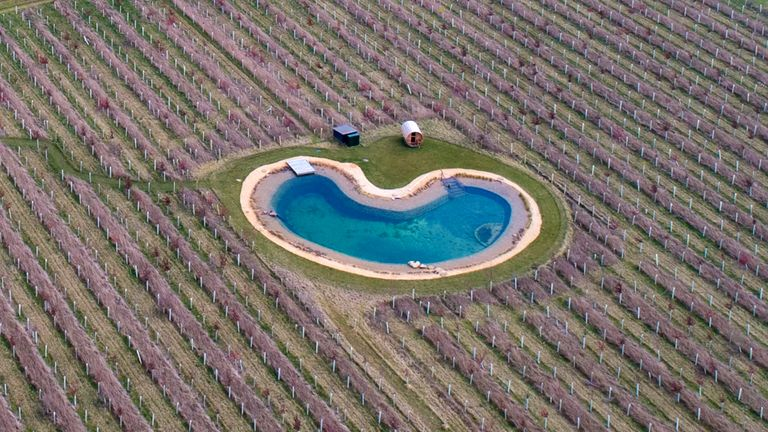 Ed Sheeran's new pond
