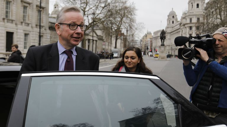 Michael Gove is said to have the backing of some ministers to take over