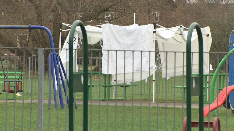 A 17-year-old girl has been stabbed to death in a park in Havering, east London
