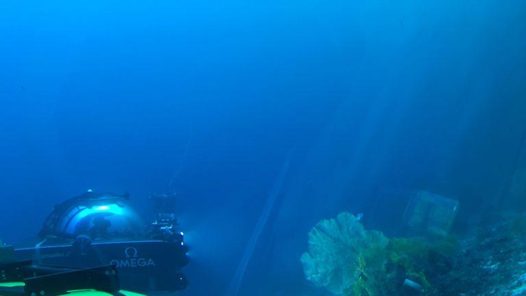 Ocean Deep Live