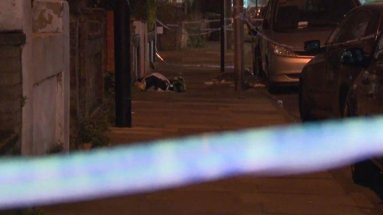 'Random' stabbings in Edmonton, London, linked by police - public warned